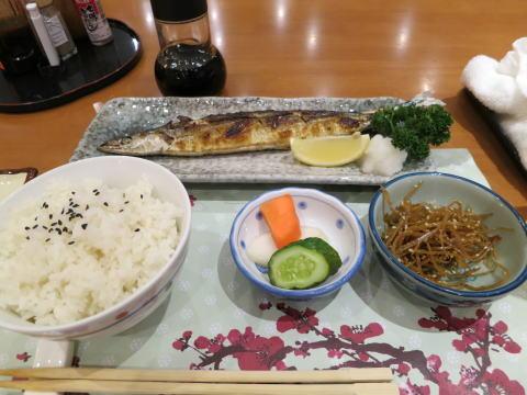 深セン 日本料理 梅田でサンマ塩焼き定食を食べる