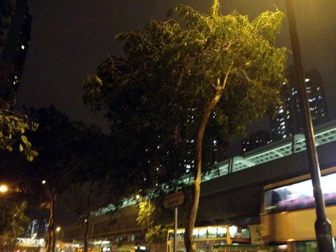 香港では台風が来るとシグナル8が出て会社が休みになる