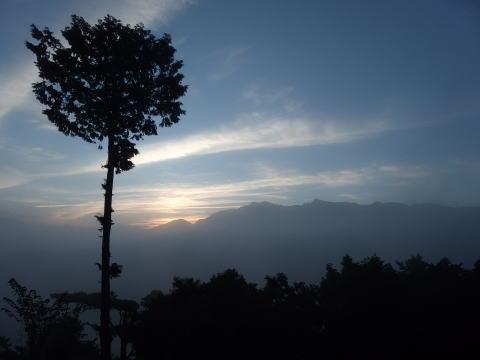 [台中旅行記] 阿里山の祝山線に乗ってご来光を見に行く