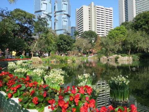 金鐘 人気のパワースポット 香港公園